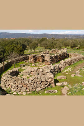 Visita Villaggio Nuragico Serra Orrios